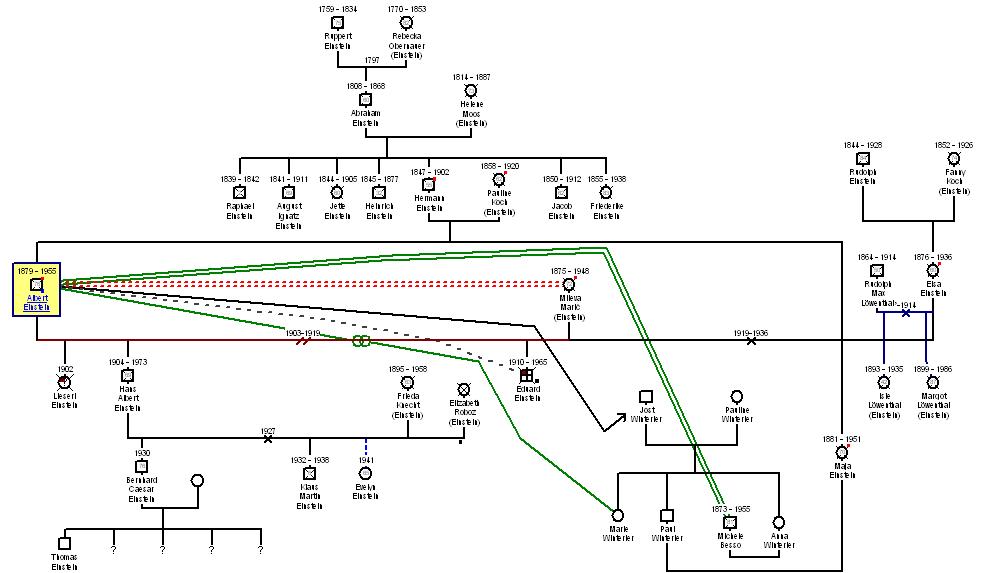 genogram examples - genopro