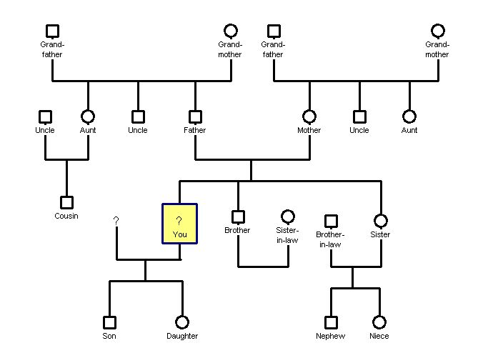 template of genogram family tree template genogram template
