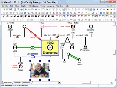 Pictures in Genogram